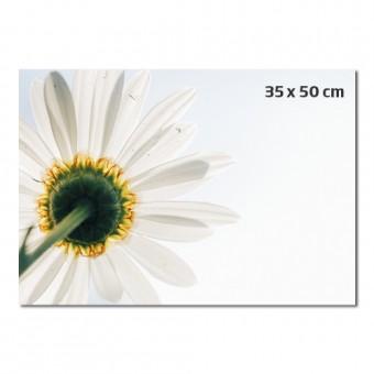 Fotografija 35 x 50 cm