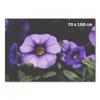 Fotografija 70 x 100 cm