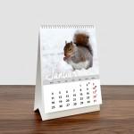 Namizni koledar Divje živali, 10,5 x 14,5 cm